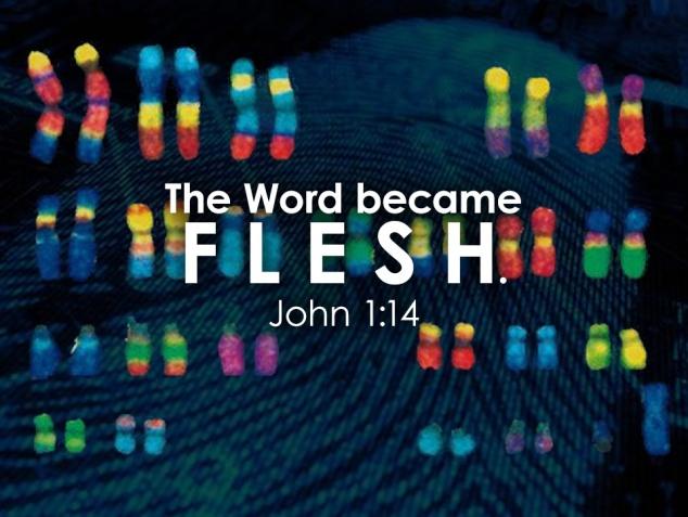 Word became flesh.jpg